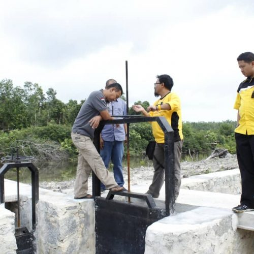 peninjauan tim raja pintu air di belitung
